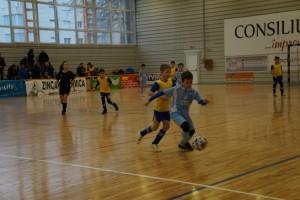 fotbal juvenil