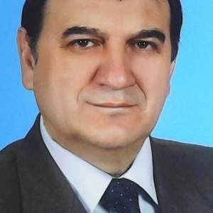 prof. Nicolae Postolache