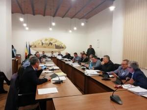 Consiliul Local 2
