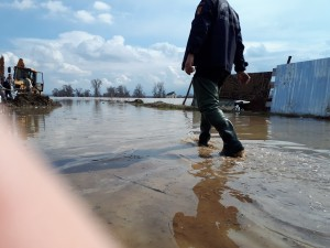 inundatii Galati 13