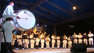 Fanfara Sinca Noua - Festivalul Cetatii Fagaras - 2013_p1