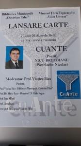 """volumul ,,Cuante"""" apare sub pseudonimul Nicu Brezoianu"""