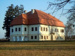 Castelul Brancovenesc de la Sambata de Sus