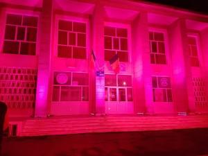 roz casa de cultura2