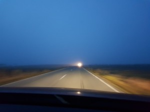 dn1 ceata