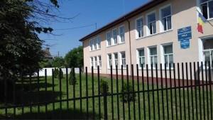scoala gimnaziala voila