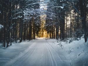 solistitiul de iarna