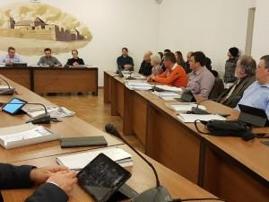 consiliul local ianuarie 2019