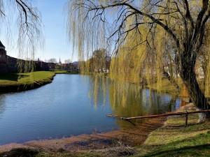şanţul cu apă de la Cetate este monument istoric