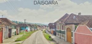 daisoara (3)